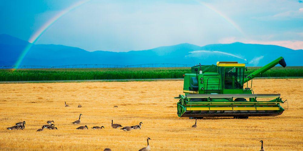 exploatare-agricola